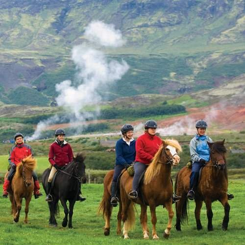 on the icelandic horse